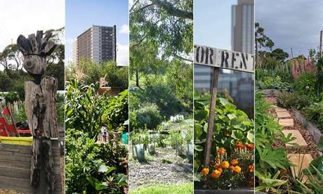 Melbourne community gardens